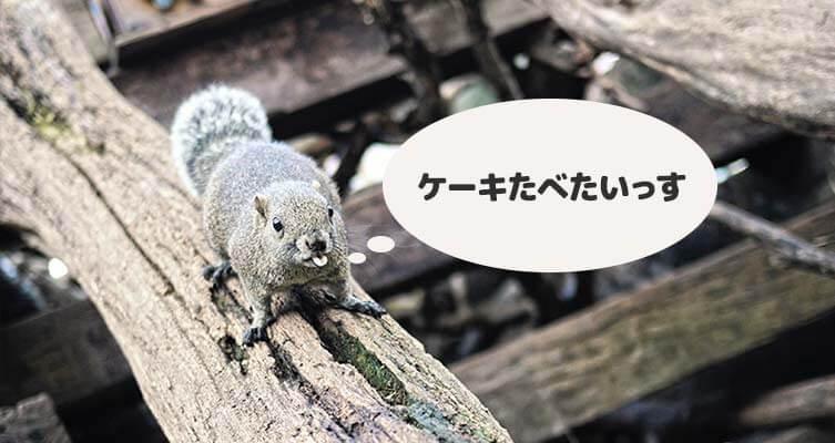 ブログ用素材制作5